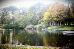 Alberi in autunno a Liverpool Fotografia Stock