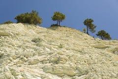 Alberi che crescono sull'orlo delle rocce leggere contro il cielo Fotografie Stock