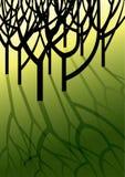 Alberi che lanciano le ombre su erba Fotografia Stock Libera da Diritti