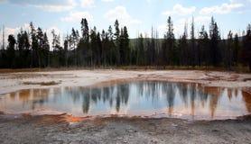 Alberi che riflettono nella sorgente di acqua calda di Emerald Pool nel bacino nero del geyser della sabbia nel parco nazionale U Fotografie Stock