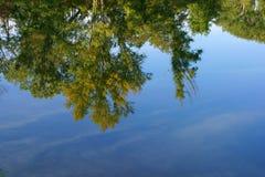 Alberi che riflettono in un lago blu Fotografie Stock