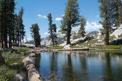 Alberi che riflettono in un lago nelle montagne immagini stock libere da diritti