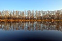 Alberi che si rispecchiano nel fiume calmo Fotografia Stock
