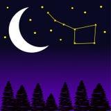 Alberi con la luna e le stelle alla notte Fotografia Stock