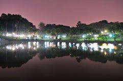 Alberi con la riflessione della luce notturna sullo stagno Immagini Stock