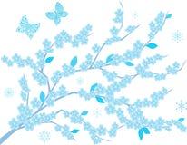Alberi congelati Immagini Stock