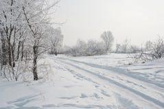 Alberi congelati al campo nevoso Immagini Stock Libere da Diritti