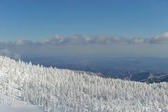 Alberi congelati sopra le alpi della montagna nel Giappone del nord Immagini Stock