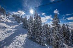 Alberi coperti da neve fresca nella stazione sciistica di Kitzbuehel, Tirolo, Austria Fotografia Stock Libera da Diritti