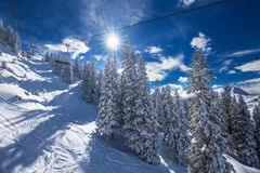 Alberi coperti da neve fresca nelle alpi di Tyrolian, Kitzbuehel, Austria Immagine Stock Libera da Diritti
