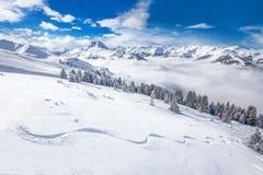 Alberi coperti da neve fresca nelle alpi di Tyrolian, Kitzbuhel, Austria Fotografie Stock