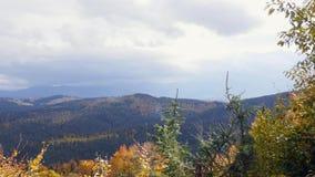 Alberi, coperti di giallo e di color scarlatto delle foglie, su cui cade la luce calda del tramonto, su nelle montagne archivi video