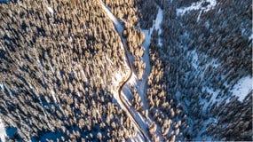 Alberi coperti nel fratempo in neve di strada da sopra aereo fotografie stock libere da diritti