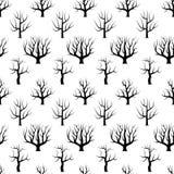 Alberi curvi in bianco e nero senza cuciture senza ambiti di provenienza delle foglie Fotografia Stock Libera da Diritti