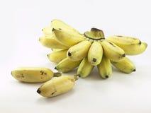 alberi da frutto delle banane spostati Fotografie Stock Libere da Diritti