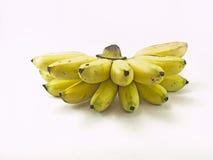 alberi da frutto delle banane spostati Fotografia Stock