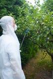 Alberi da frutto di spruzzatura del giardiniere Fotografia Stock