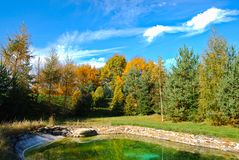 Alberi dallo stagno, repubblica Ceca, autunno immagini stock