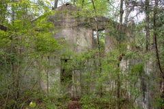Alberi davanti ad una vecchia casa abbandonata fotografie stock libere da diritti