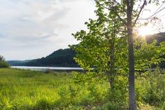 Alberi davanti al tramonto dal fiume Connecticut Fotografia Stock Libera da Diritti