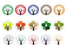 Alberi dei colori differenti Fotografia Stock