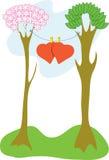 Alberi del biglietto di S. Valentino Fotografie Stock Libere da Diritti