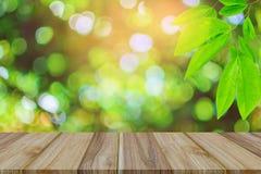 Alberi del tavolo della presidenza e bokeh verdi di legno della pianta della foglia Fotografia Stock