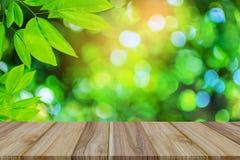 Alberi del tavolo della presidenza e bokeh verdi di legno della pianta della foglia Fotografia Stock Libera da Diritti