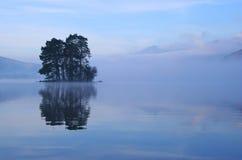 Alberi dell'isola Fotografia Stock Libera da Diritti