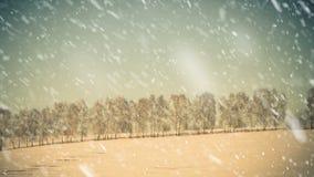 Alberi della collina di inverno sull'orizzonte archivi video