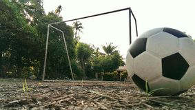 Alberi della luce di scopo del pallone da calcio di calcio Fotografia Stock Libera da Diritti