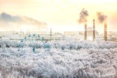 Alberi della neve con la vista panoramica della ruota di ferris Fotografia Stock Libera da Diritti