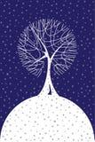 Alberi della neve di inverno nelle precipitazioni nevose Immagini Stock Libere da Diritti