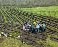 Alberi della pianta della gente sul campo in letti scavati Fotografie Stock