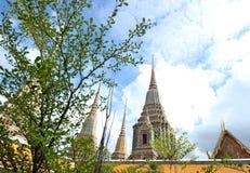 Alberi della priorità alta ed architettura tailandese antica di Chedi o della pagoda a Wat Pho Fotografie Stock Libere da Diritti