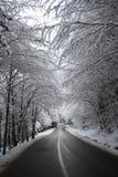 Alberi dello Snowy sopra la strada, fino ai montains Fotografia Stock Libera da Diritti