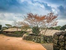 Alberi di acero rosso nel villaggio delle gente di Seongeup Immagine Stock