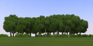 alberi di anime del fumetto 3D Immagine Stock