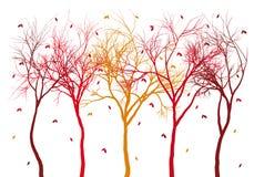 Alberi di autunno con le foglie cadenti, vettore Immagine Stock