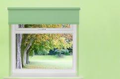 Alberi di autunno da una finestra immagine stock libera da diritti