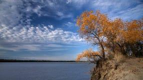 Alberi di autunno dal fiume Fotografia Stock