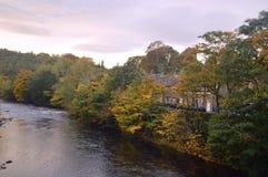 Alberi di autunno dallo swale del fiume immagine stock libera da diritti