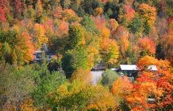 Alberi di autunno nel Vermont vicino a Waterville Immagini Stock