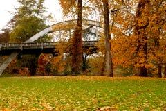 Alberi di autunno in parco Fotografie Stock
