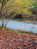Alberi di autunno sopra la sponda del fiume immagine stock