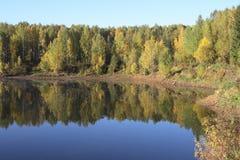 Alberi di autunno sul litorale del lago Fotografia Stock