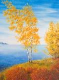 Alberi di betulla gialla sulla riva del lago pacifico Fotografie Stock Libere da Diritti