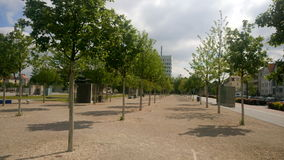 Alberi di Bielefeld Kesselbrink Fotografia Stock Libera da Diritti