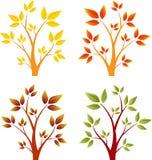 Alberi di caduta, Autumn Trees, vettori dell'albero Immagine Stock