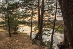 Alberi di caduta sul fiume Immagine Stock Libera da Diritti